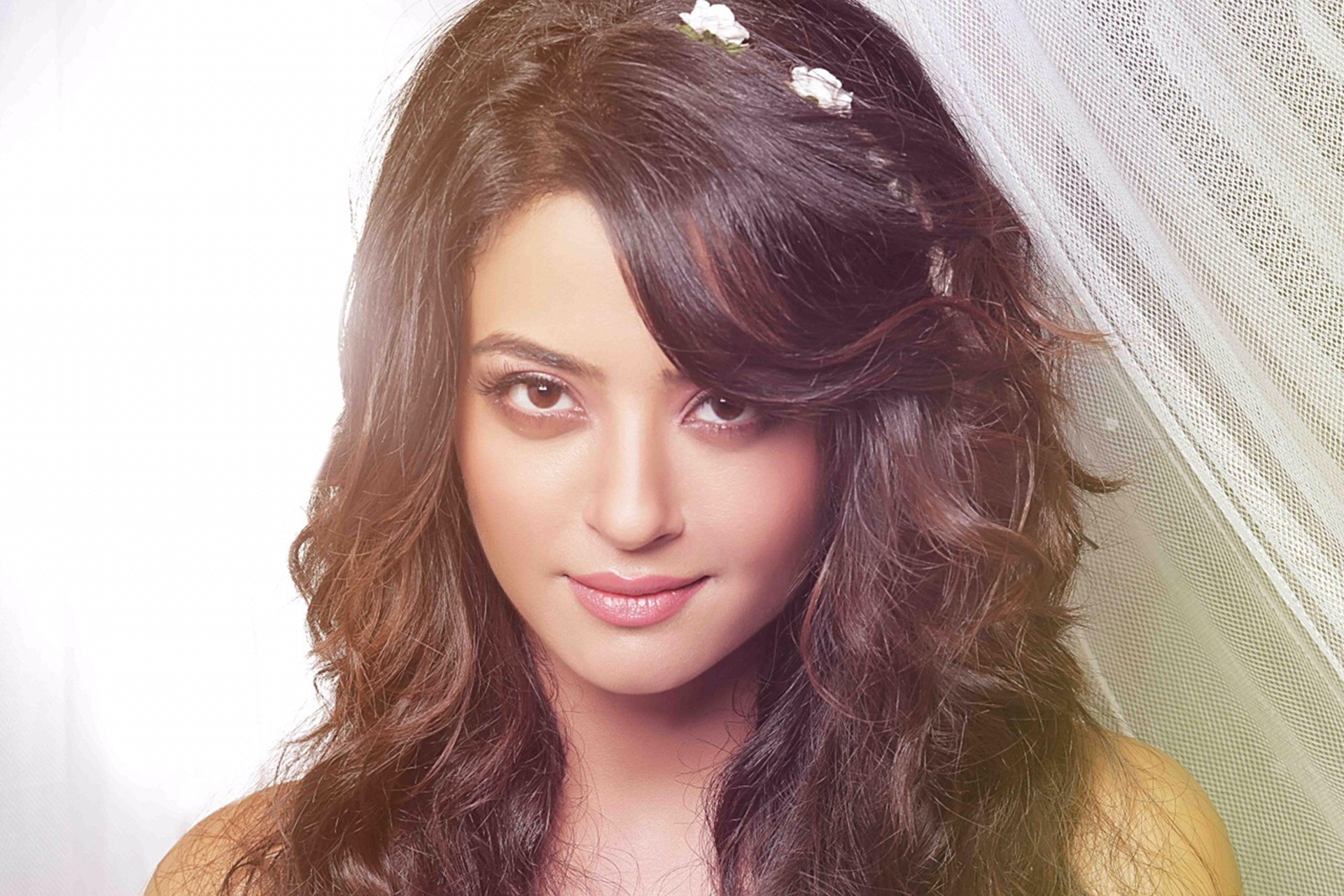Surveen Chawla Background Wallpaper 20461